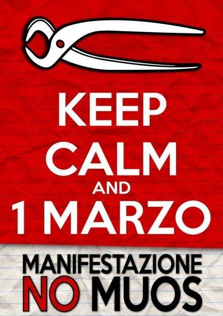 manif1marzo