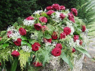 roses-61203_640
